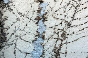 Erst, wenn das Efeu weg ist, werden die Schäden an Verputz und Mauer sichtbar.